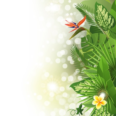 Tropical background with flowers and plants Illustration