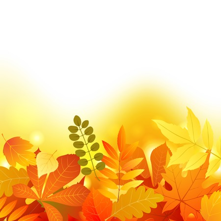 Bright background with autumn leaves Vector