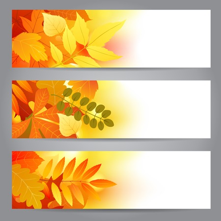 Bright banners with autumn leaves Vector
