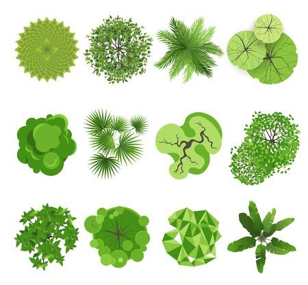 groene boom: Bomen - bovenaanzicht Gemakkelijk te gebruiken in uw landschapsontwerp projecten Stock Illustratie