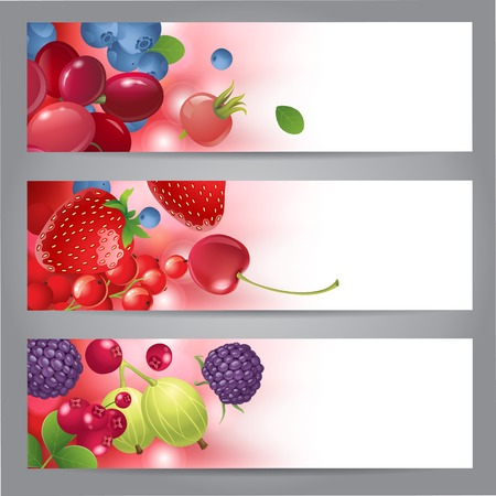 3 horizontal banners with berries Vector