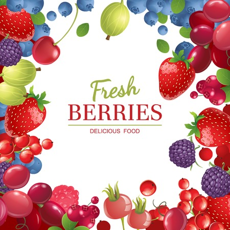 Bright  berries  over white background Vector