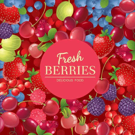 Bright  background with different berries Vector