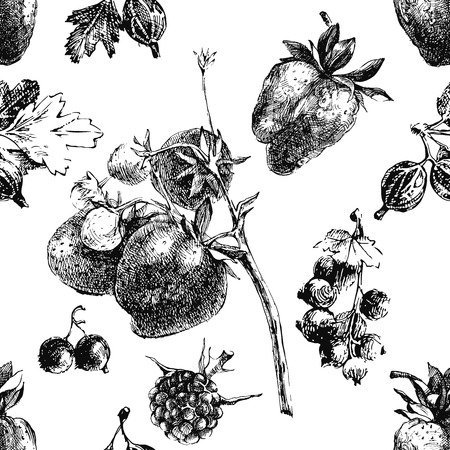 Hand drawn berry seamless background Vector