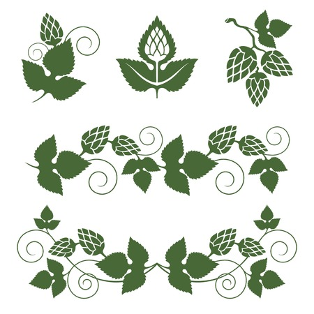 brewery  hops: stylized hop  borders and design elements