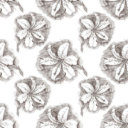 patrón transparente con mano dibuja la flor del lirio