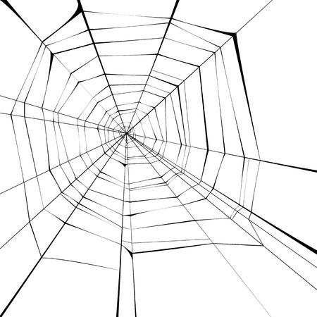 black spider web over white background Illustration