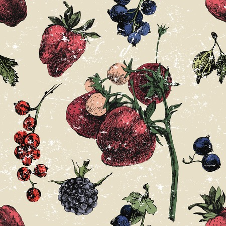 blue berry: Hand drawn berry seamless background