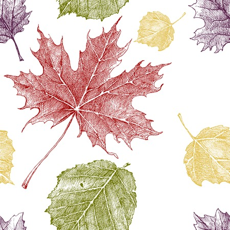 Hand drawn pattern with autumn leaves Vector