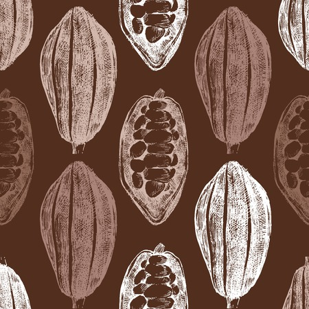 hand drawn cocoa beans seamless in vintage style Vector