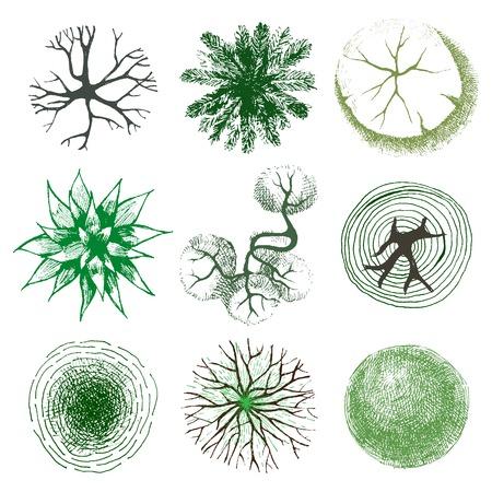 Dibujado a mano árboles - vista desde arriba