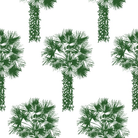 Hand drawn palm tree seamless in retro style Vector
