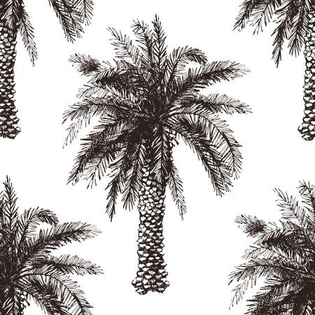 Hand getrokken palmboom naadloos in retro stijl Stock Illustratie