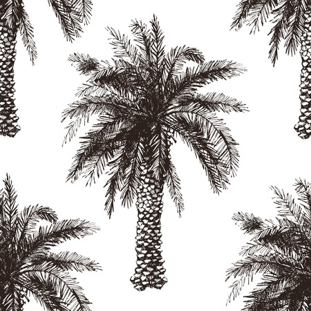 Hand drawn palm tree seamless in retro style Illustration