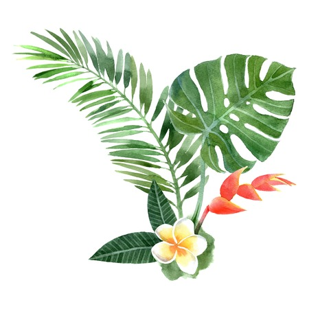 Main aquarelle dessinée plantes tropicales Banque d'images - 33817473