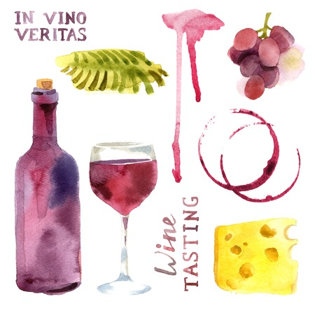 wine tasting: Bright watercolor wine design elements Illustration