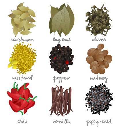 9 different spices over white background