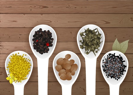 nutmeg: different spices in spoons over wooden background