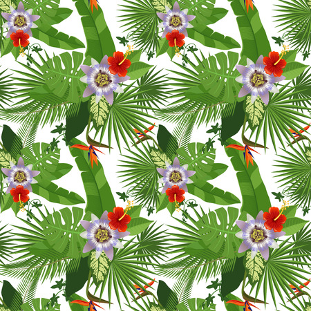 philodendron: Tropical seamless pattern on white background Illustration