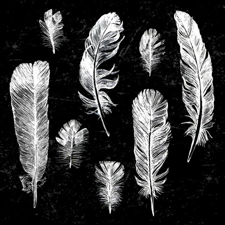 White hand drawn feathers set on black background