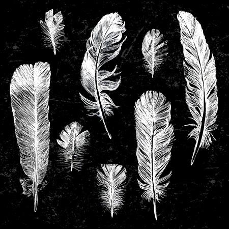 Witte hand getekende veren ingesteld op een zwarte achtergrond Stock Illustratie