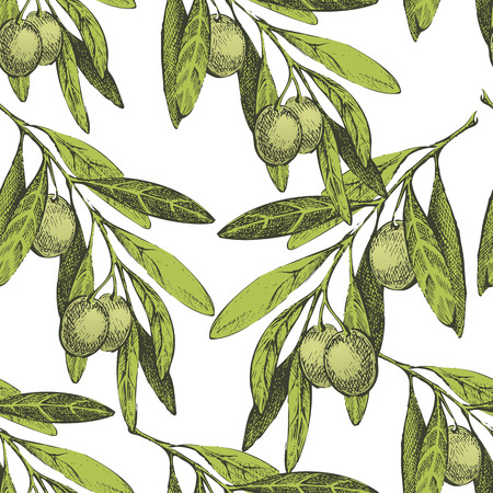 old fashioned vegetables: seamless pattern with hand drawn olives on white background