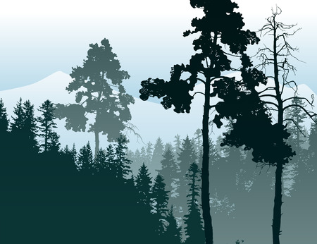 non urban: Retro-styled poster with coniferous forest landscape