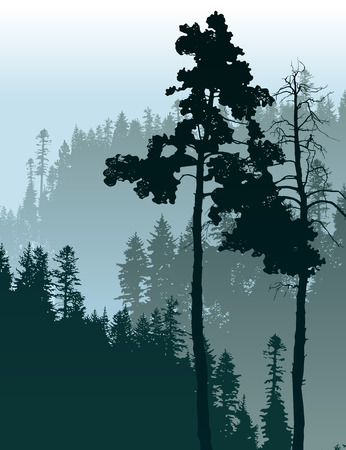Retro-styled poster with coniferous forest landscape