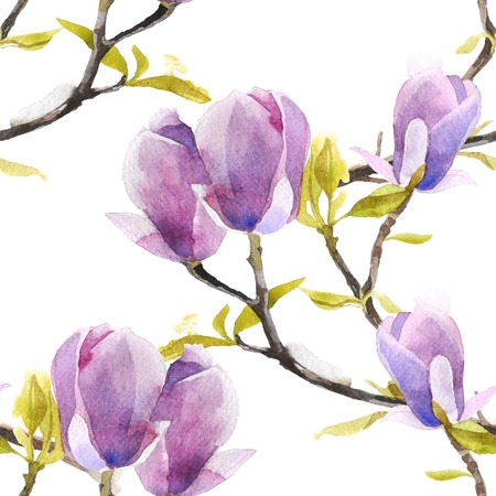 magnolia tree: Watercolor magnolia seamless pattern on white background