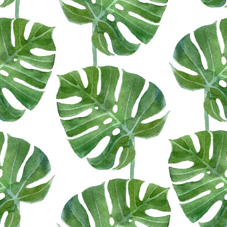 watercolor monstera leaf seamless pattern on white background Çizim