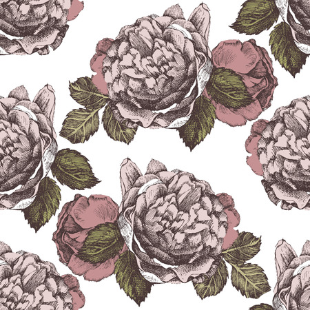 flower sketch: seamless ornament with hand drawn roses in vintage style