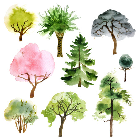 pine green: Set of 9 watercolor trees