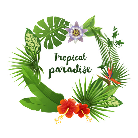 tropical forest: Wreath made of tropical leaves and flowers with place for your text