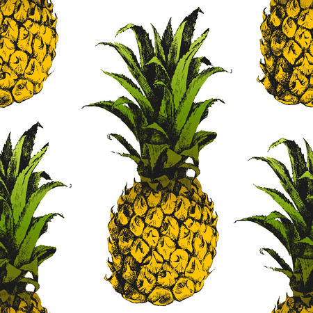 ananas: Hand drawn pineapple seamless pattern