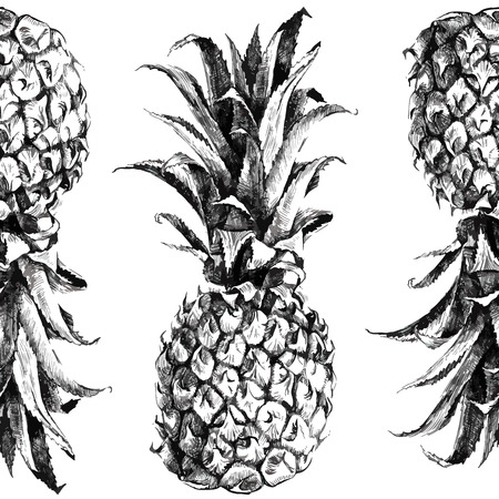 pineapples: Hand drawn pineapple seamless pattern