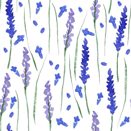 painted: Watercolor lavender seamless pattern on white background