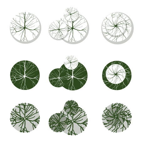 Trees - top view. Easy to use in your landscape design projects