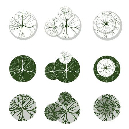 Bomen - bovenaanzicht. Makkelijk te gebruiken in uw landschapsontwerp projecten