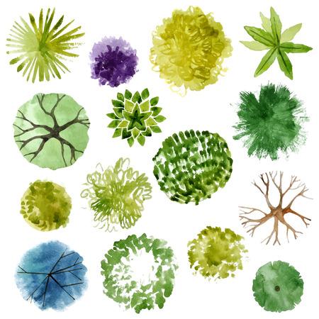 táj: Akvarell fák - felülnézetben. Könnyen használható a kerttervezés projektek