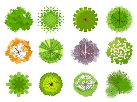 boom: Bomen - bovenaanzicht. Makkelijk te gebruiken in uw landschapsontwerp projecten Stock Illustratie