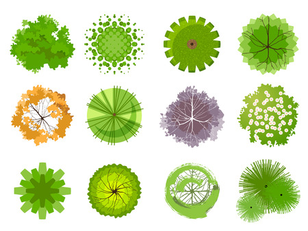 medio ambiente: Árboles - vista desde arriba. Fácil de usar en sus proyectos de diseño de paisaje Vectores