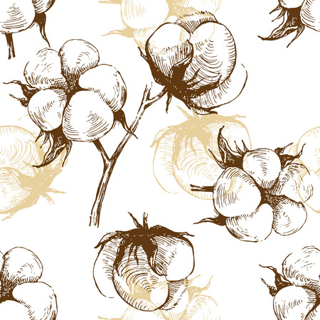 raw material: hand drawn cotton plant seamless pattern