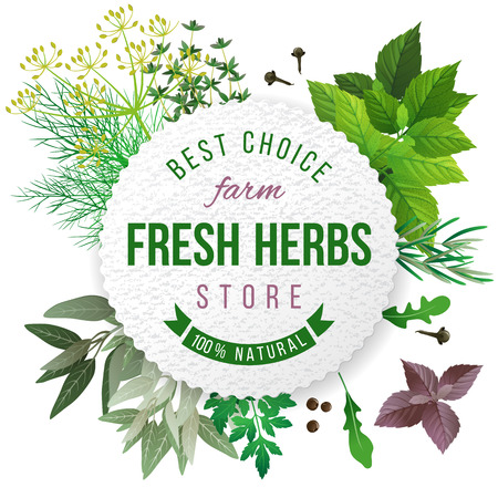 herb garden: Fresh herbs store emblem - easy to use in your own design
