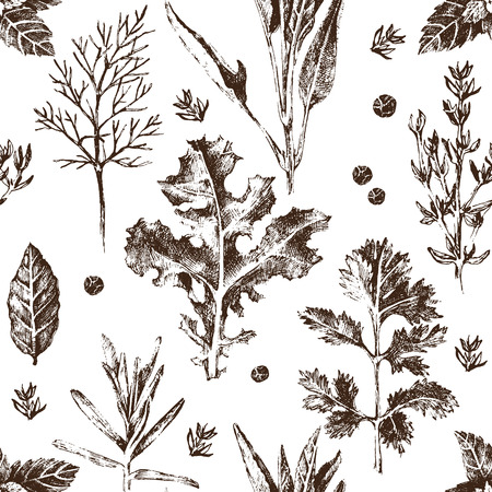 spices: seamless pattern with hand drawn herbs and spices in vintage style