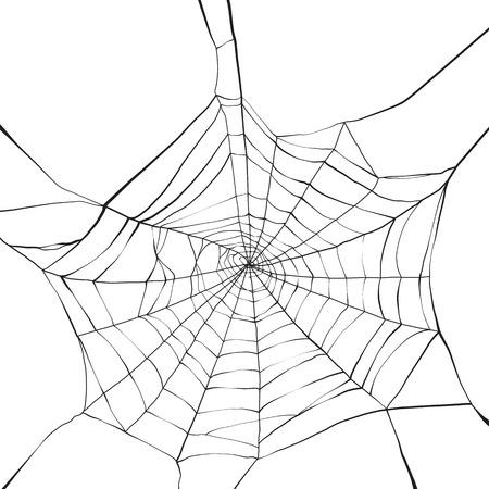 cobwebby: Black spider web on white background
