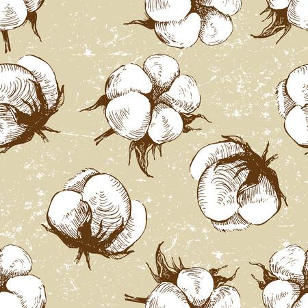 cotton plant: hand drawn cotton plant seamless pattern