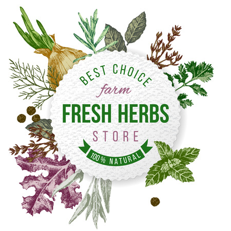 Round emblem with type design and hand drawn herbs and spices on white background