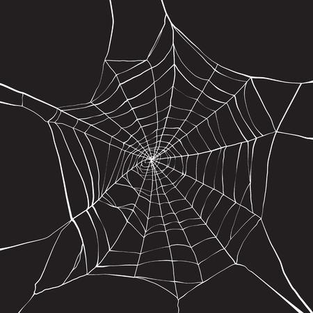 White spider web on dark background Illustration