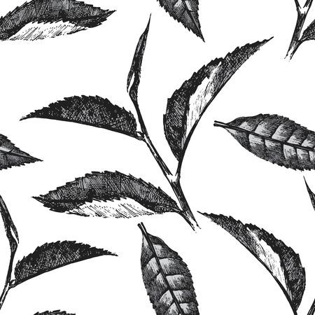 naadloze patroon met thee bladeren op een witte achtergrond Stock Illustratie