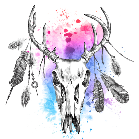 american native: Hand drawn illustration with deer scull and feathers over watercolor background